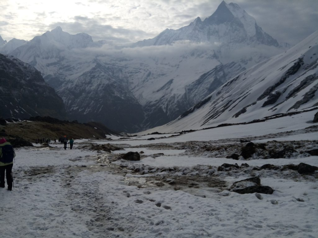Annapurna Base Camp,Ace vision Nepal