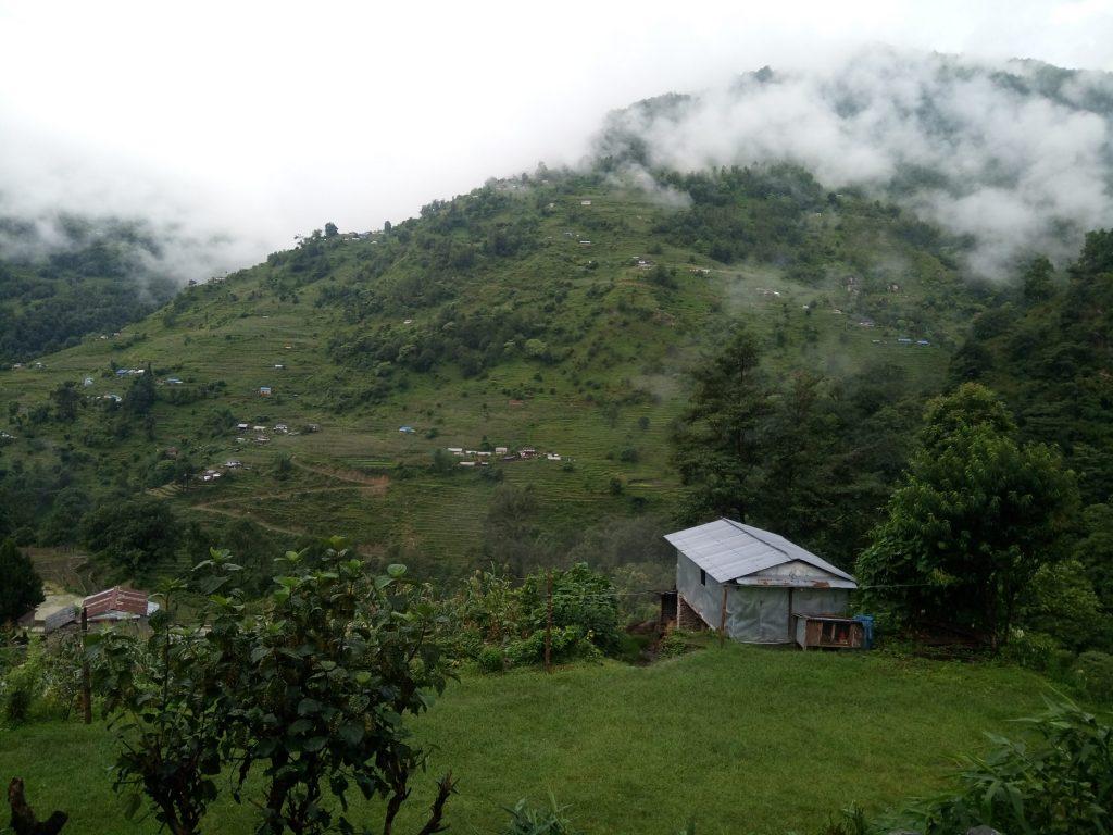 https://www.acevisionnepal.com/trip/annapurna-ghorepani-poon-hill-trek/